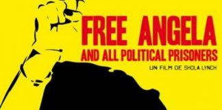 free-angela-and-all-political-prisoners