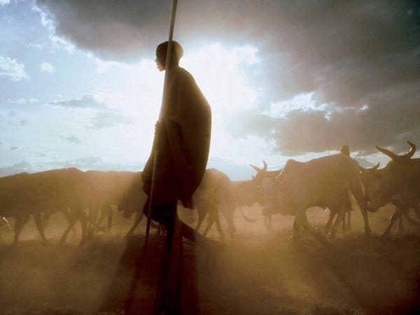 masai-tribesman