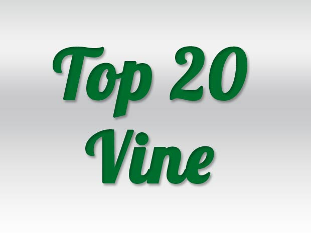 The Best Vines and Best Vine Videos