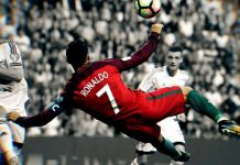 portugal coupe du monde