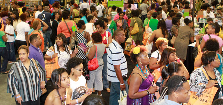 L'actuArt – Natural Hair Health and Beauty Show 2012