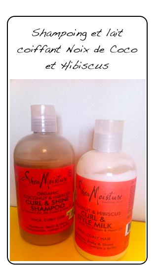 Shampoing et lait coiffant Noix de Coco et Hibiscus
