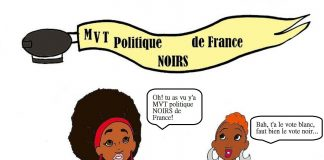 Mouvement politique Noirs de France