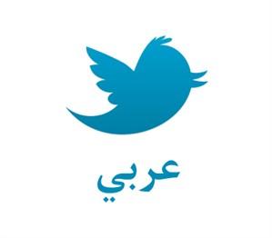 Pays arabes et réseaux sociaux, histoire d'un amour fou