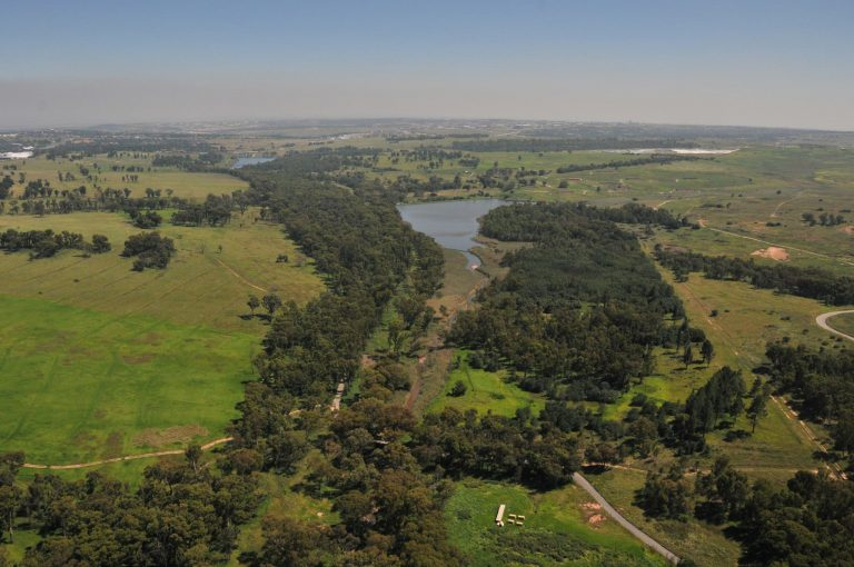 Modderfontein en Afrique du Sud : le New-York Africain ?