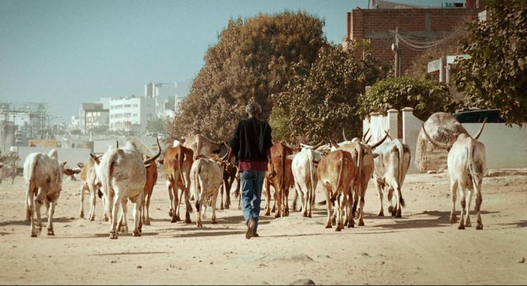 Films en lice pour les Trophées Francophones du Cinéma 2014