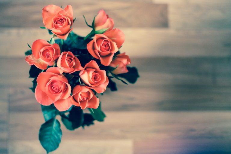 Pour célibataires ou amoureux, 5 idées pour égayer ta fête de l'amour!